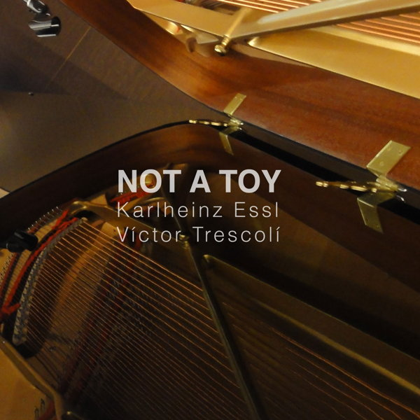 Not a Toy - Cover
