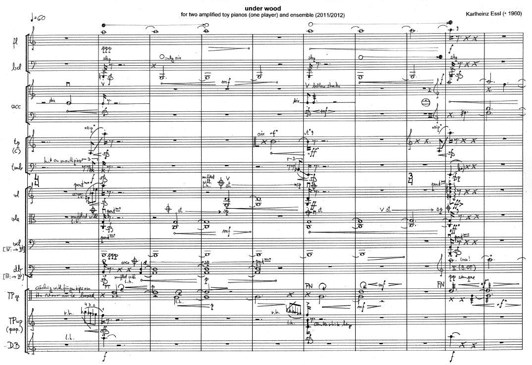Karlheinz Essl: under wood - score excerpt